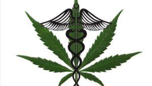 Does medical marijuana help Raynaud's?